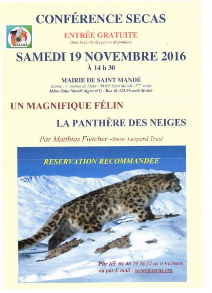 Affiche panthere 467