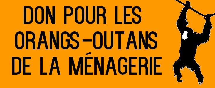Dons Orangs-Outans de la Ménagerie