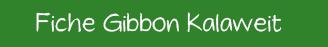 Fiche gibbon