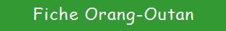 Image titre orang outan