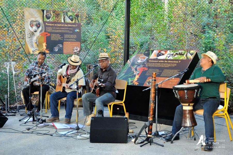 Lemuriens musiciens