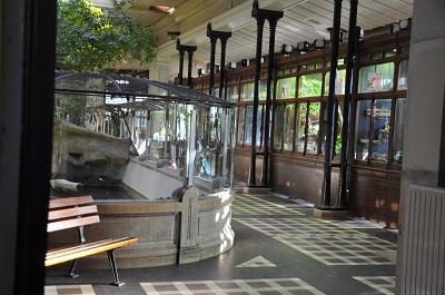 Palais reptiles2