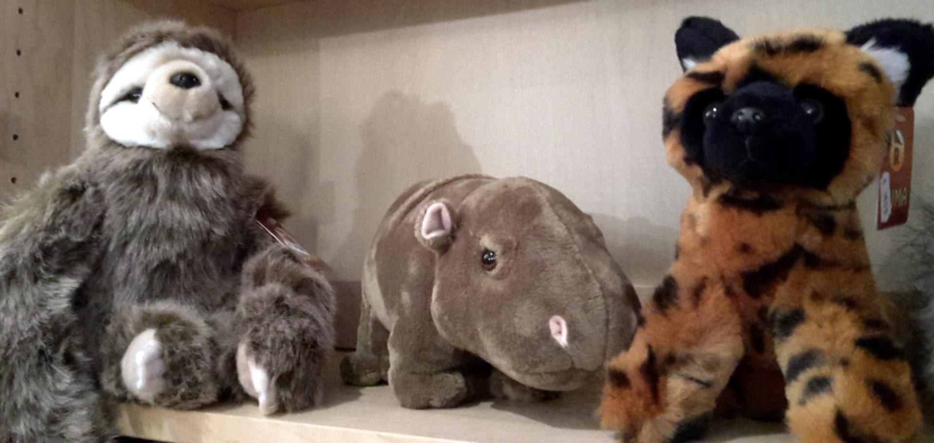 Paresseux hippo et lycaon