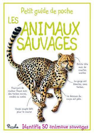 Petit guide les animaux sauvages2 modifie 1
