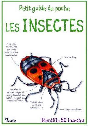 Petit guide les insectes 2 modifie 1