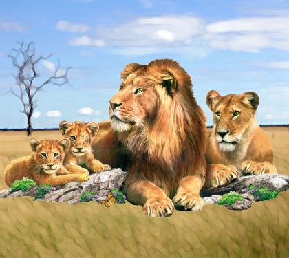 Secas family4 1