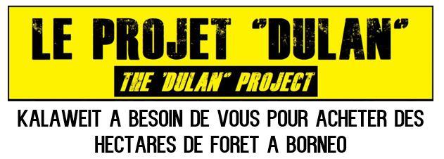 Dulan