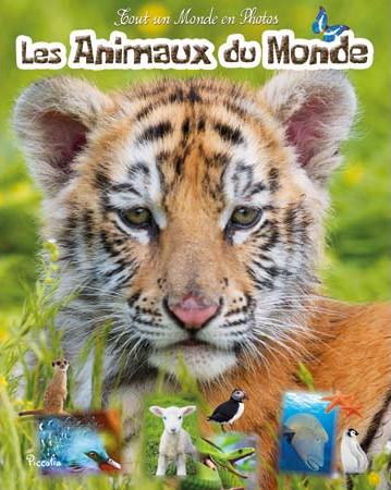 Les animaux du monde2