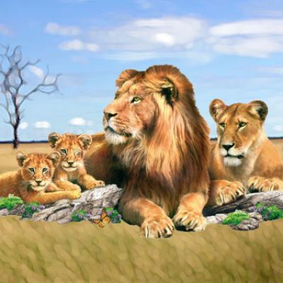 Forfait Famille pour 4 personnes